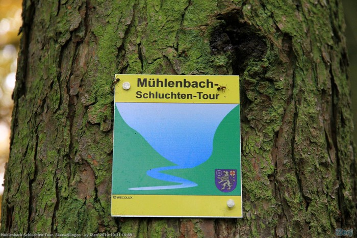 Photo of Mühlenbach-Schluchten-Tour | Link zu den Bildern