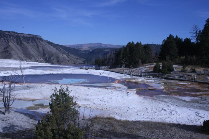 mynd af Canary Springs-Yellowstone