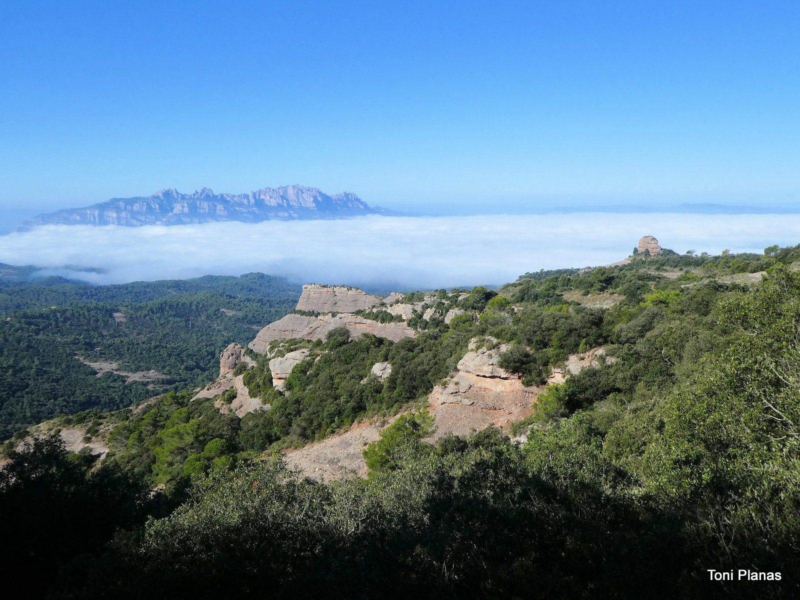 Photo of El Camí Ral del Coll de Daví