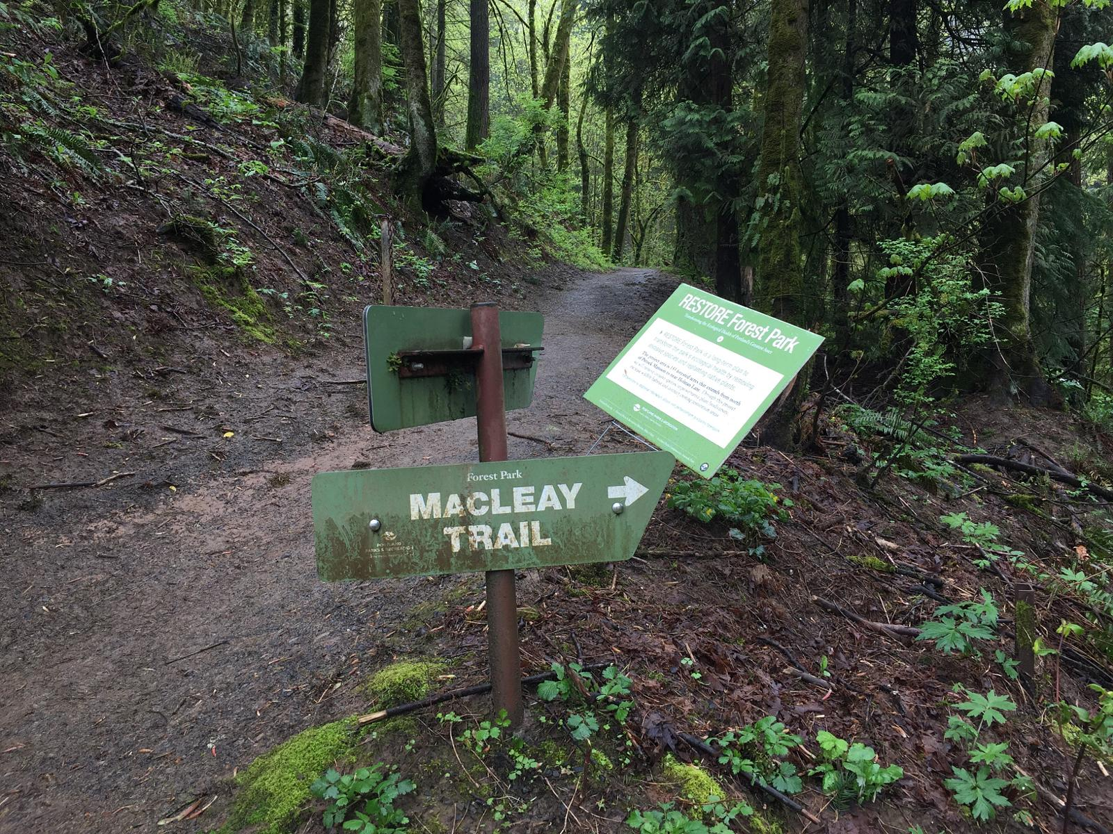 Maclean trails