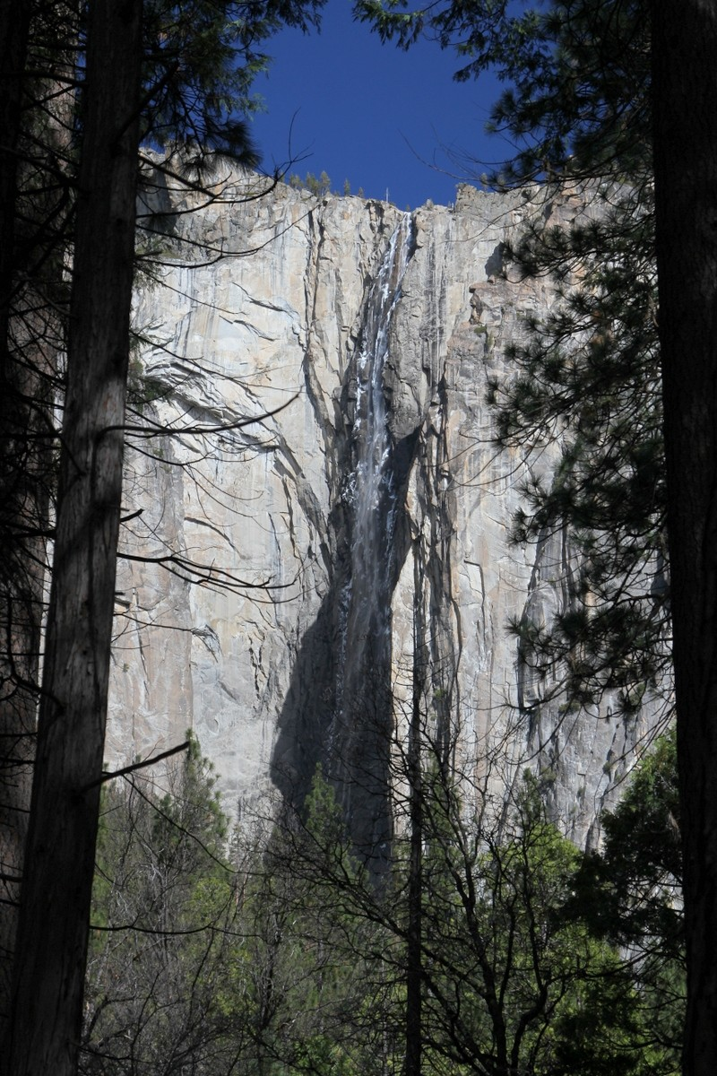 Photo of Donna Party - Yosemite Valley Floor
