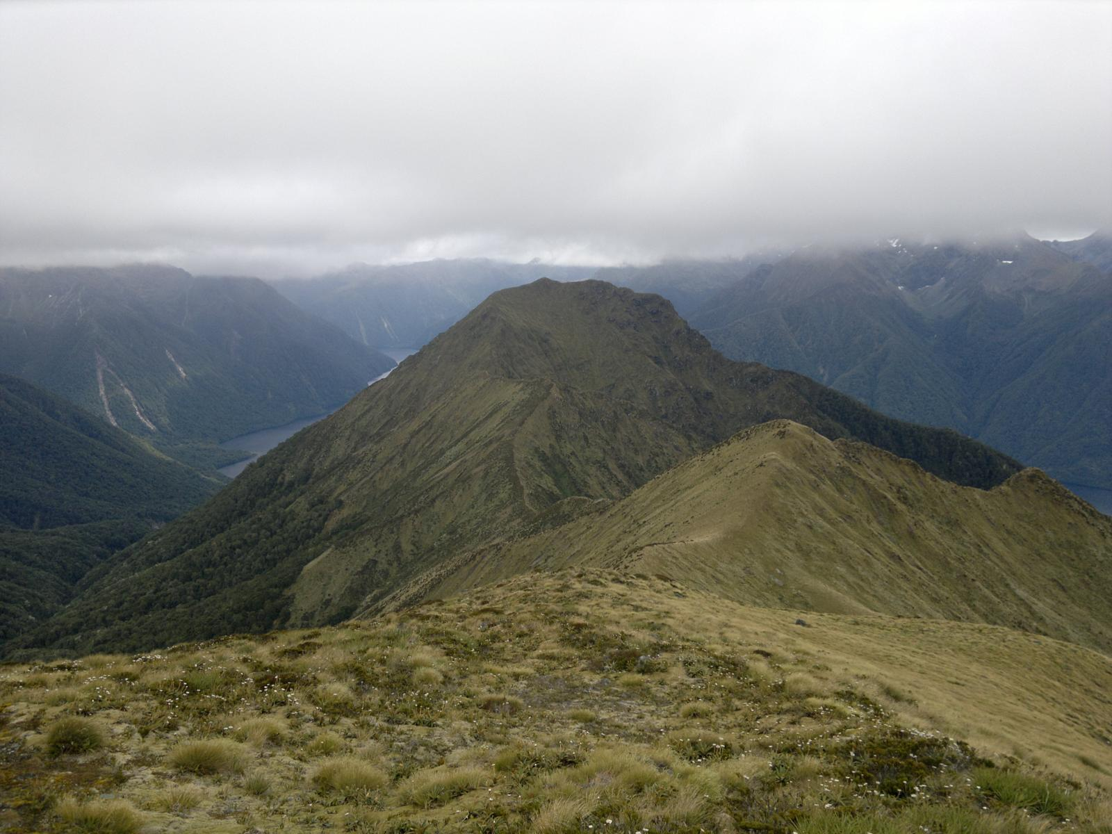 Слика од New Zealand - Kepler Track in one day (29/12/2010)