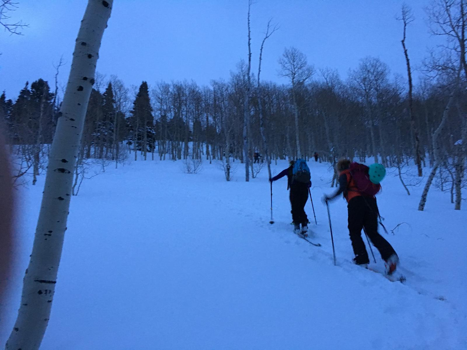Foto di Short Swing from Spruces, Big Cottonwood Canyon