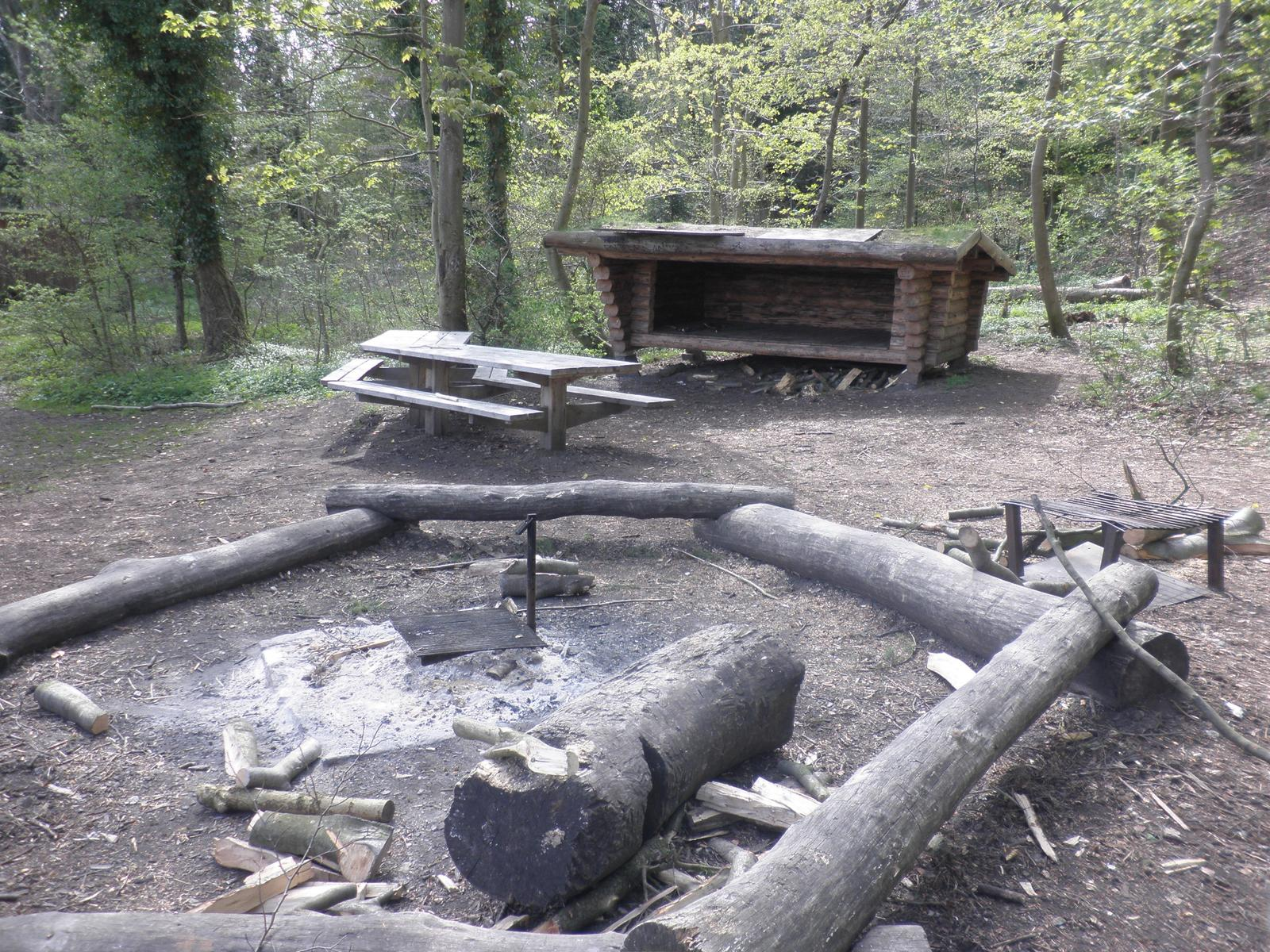 Foto af Picnic and shelter area