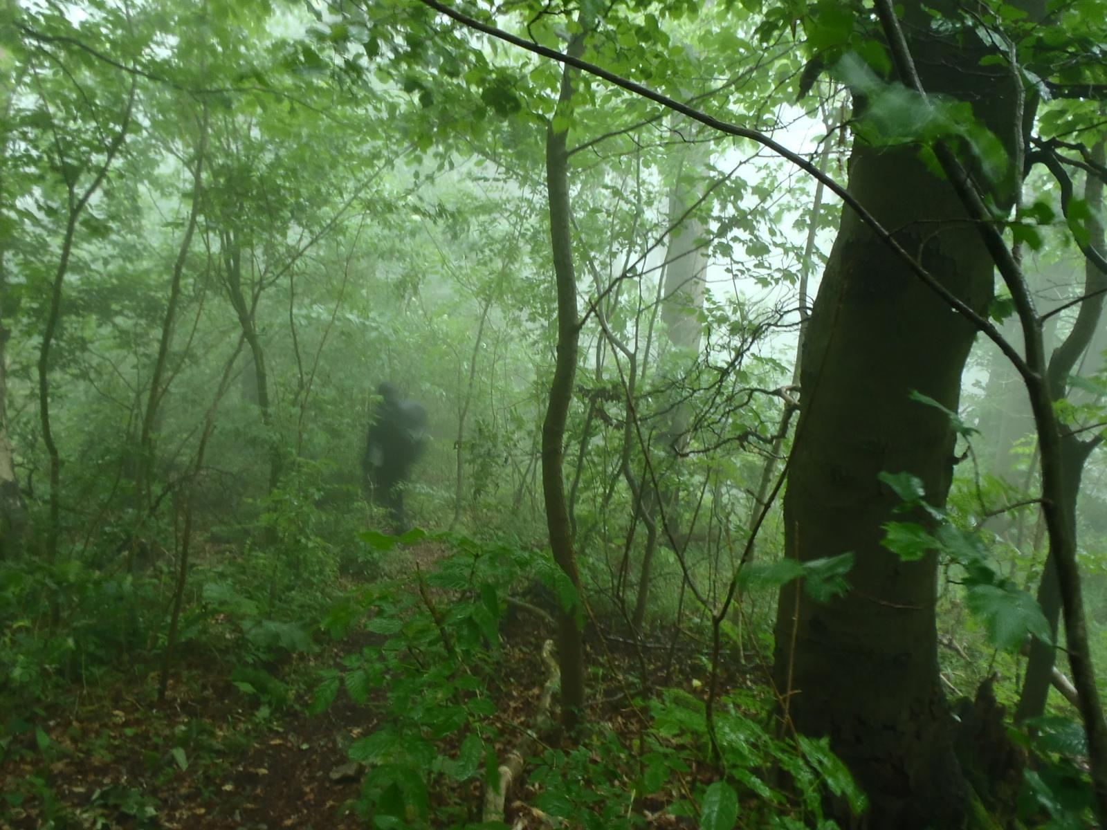Photo of Ith and Duinger Wald