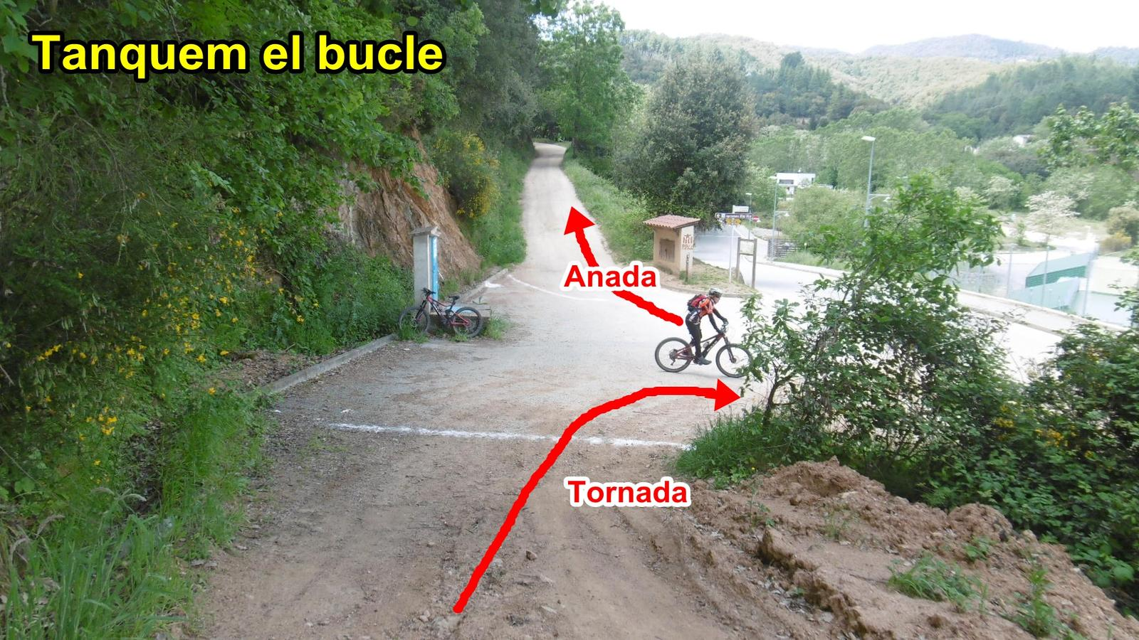 Photo of BUCLE