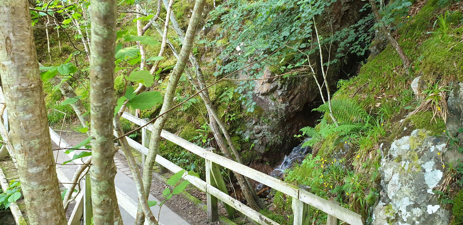 Photo of Falls of Foyers