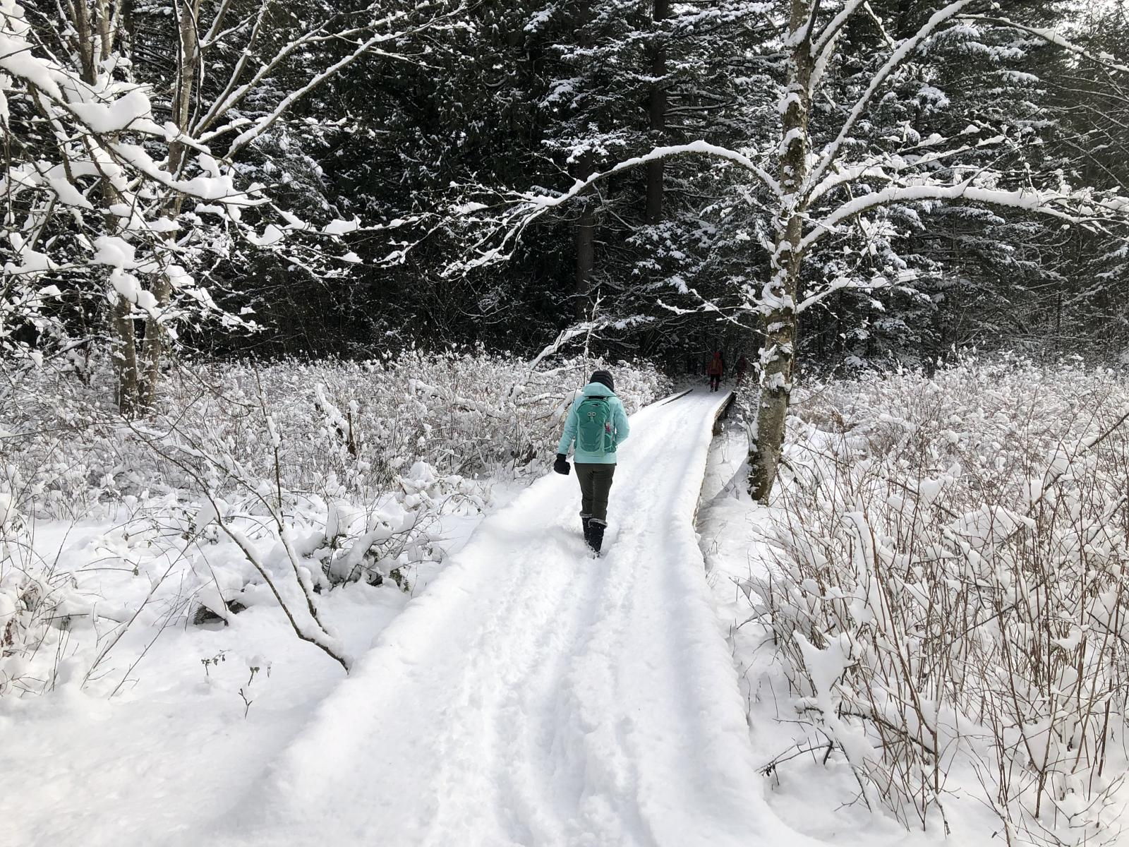Foto de Campbell valley snow hike