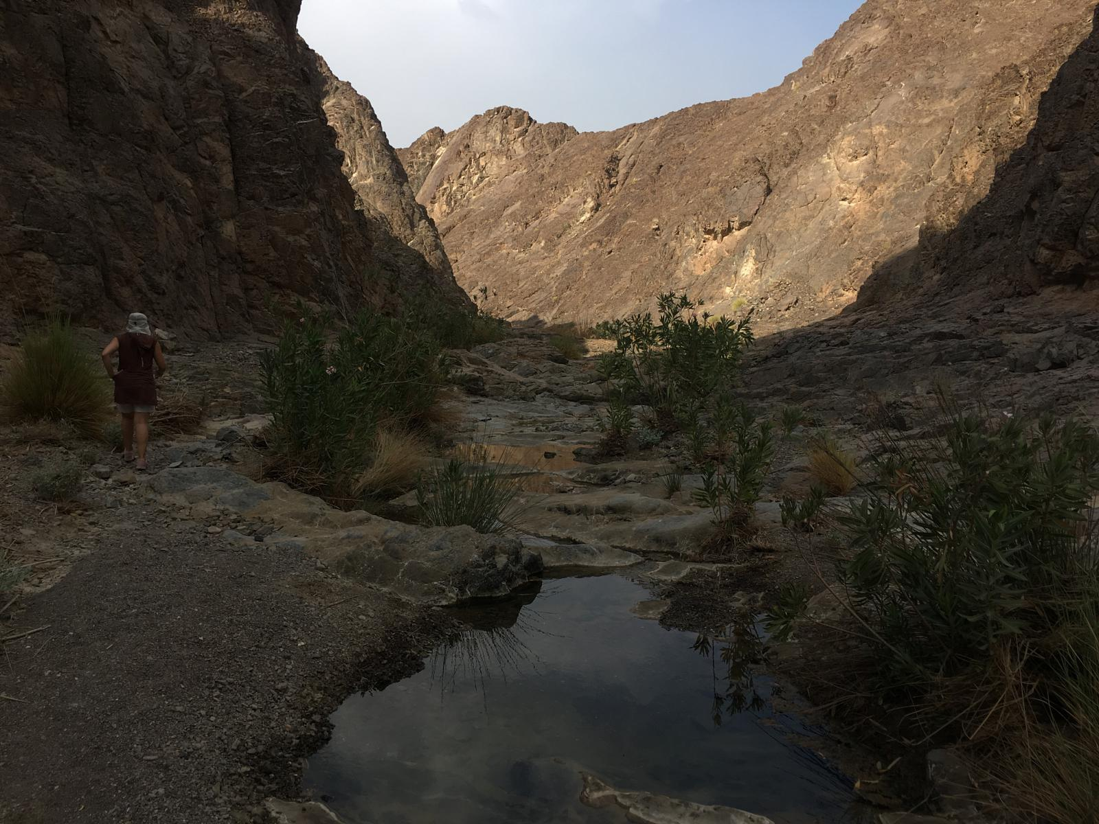 Foto van The two Shawka wadi's loop and jobless valley