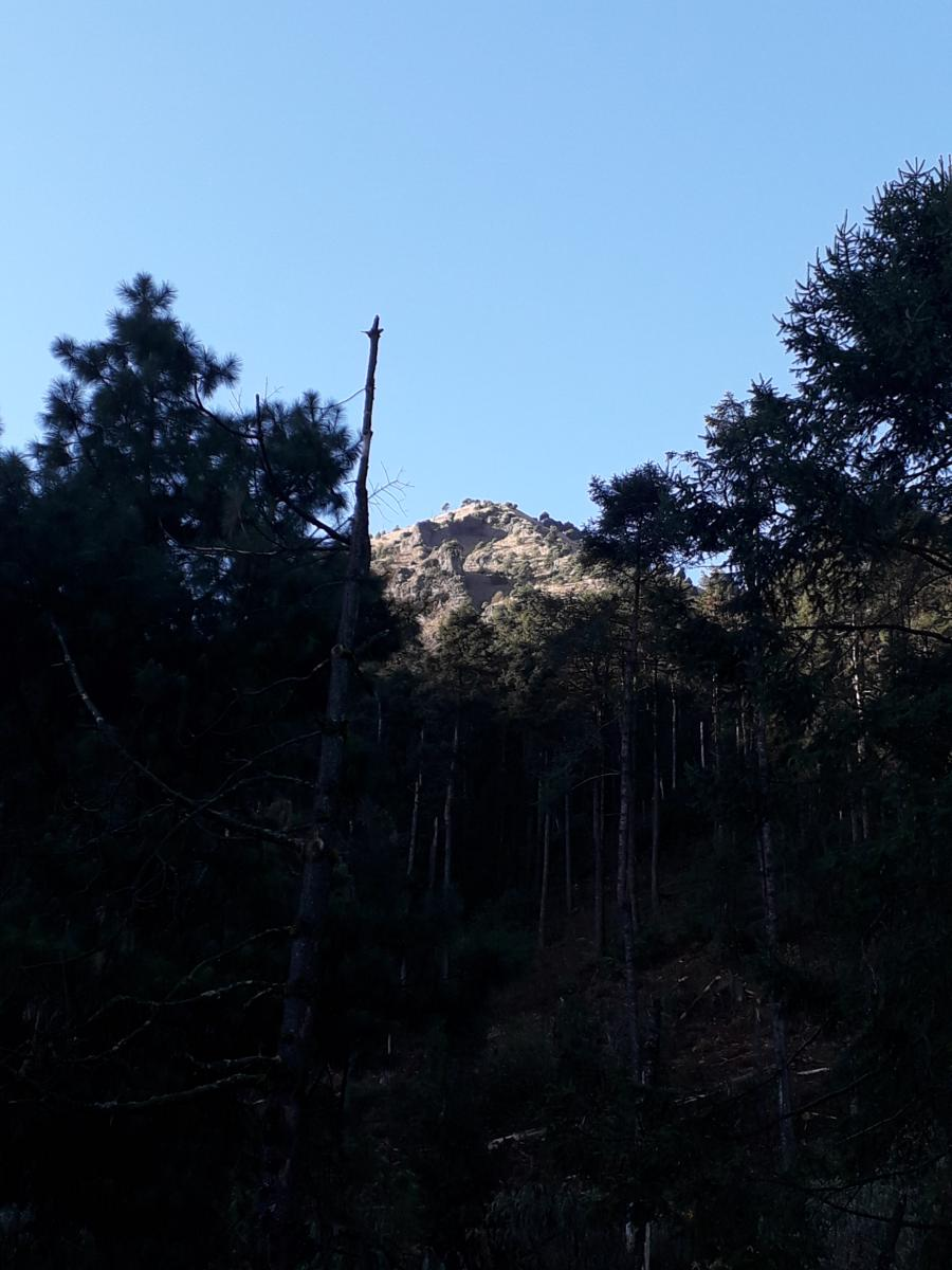Photo de Cimas del Ajusco 3 AC