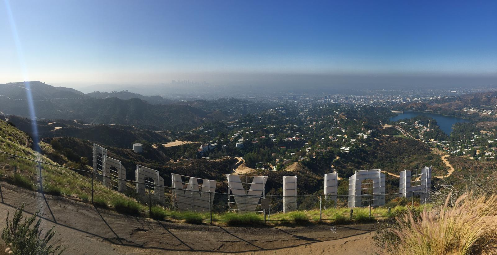 Bild av Wilson tree et Hollywood sign