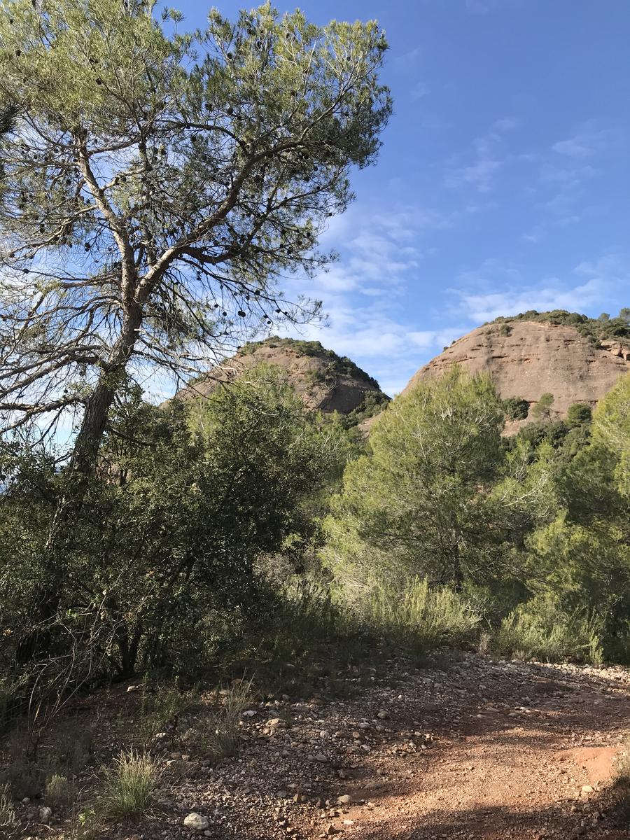 Photo of 2020-01-18-Sant Llorenç de munt y L' Obac