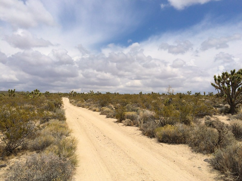 Photo de Mojave Road to Caruther's Canyon 4x4 trip