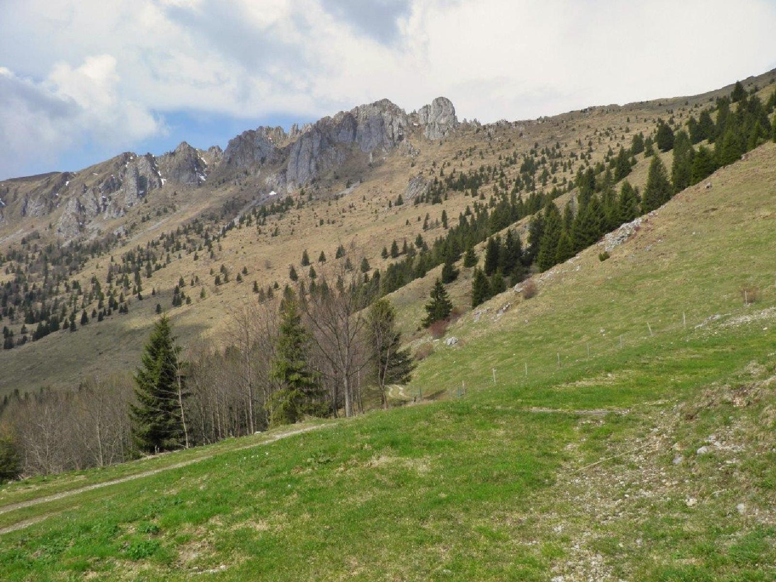 Photo of Malga Presolana