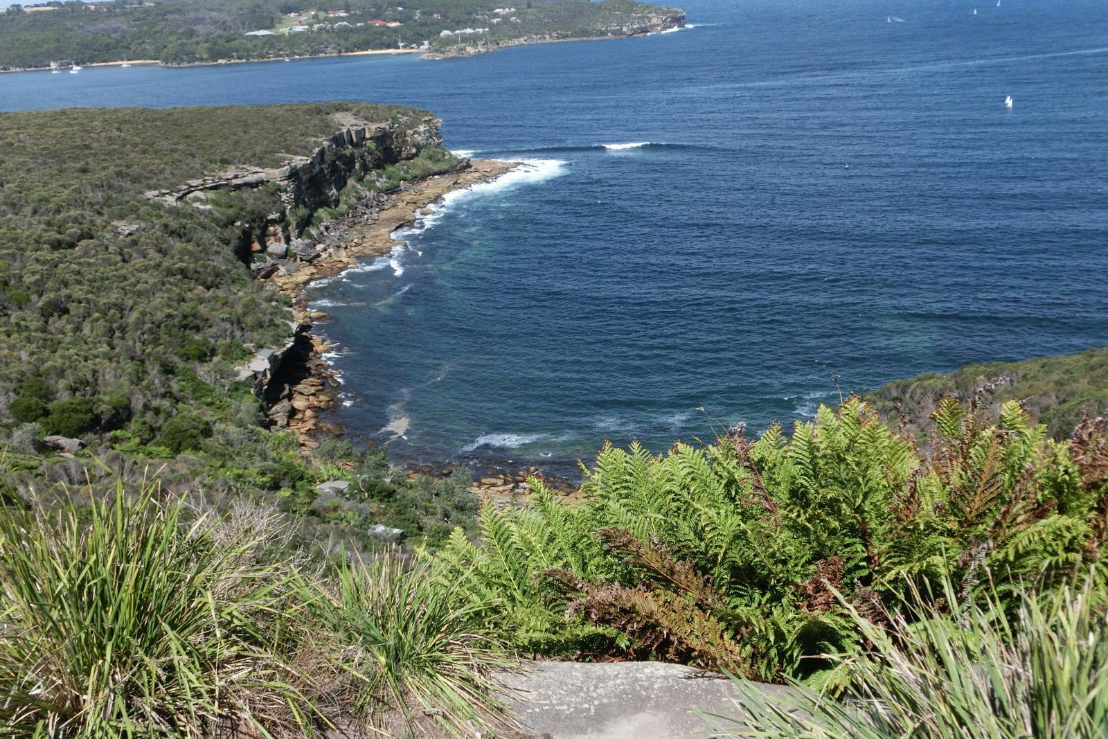 Фото Manly to Spit Bridge Walk (Manly Scenic Walkway)