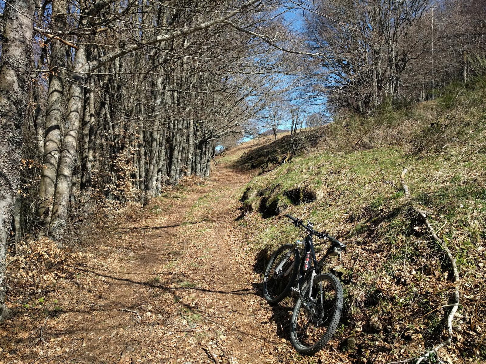 Photo of Percorso MTB n.6 - Parco Foreste Casentinesi