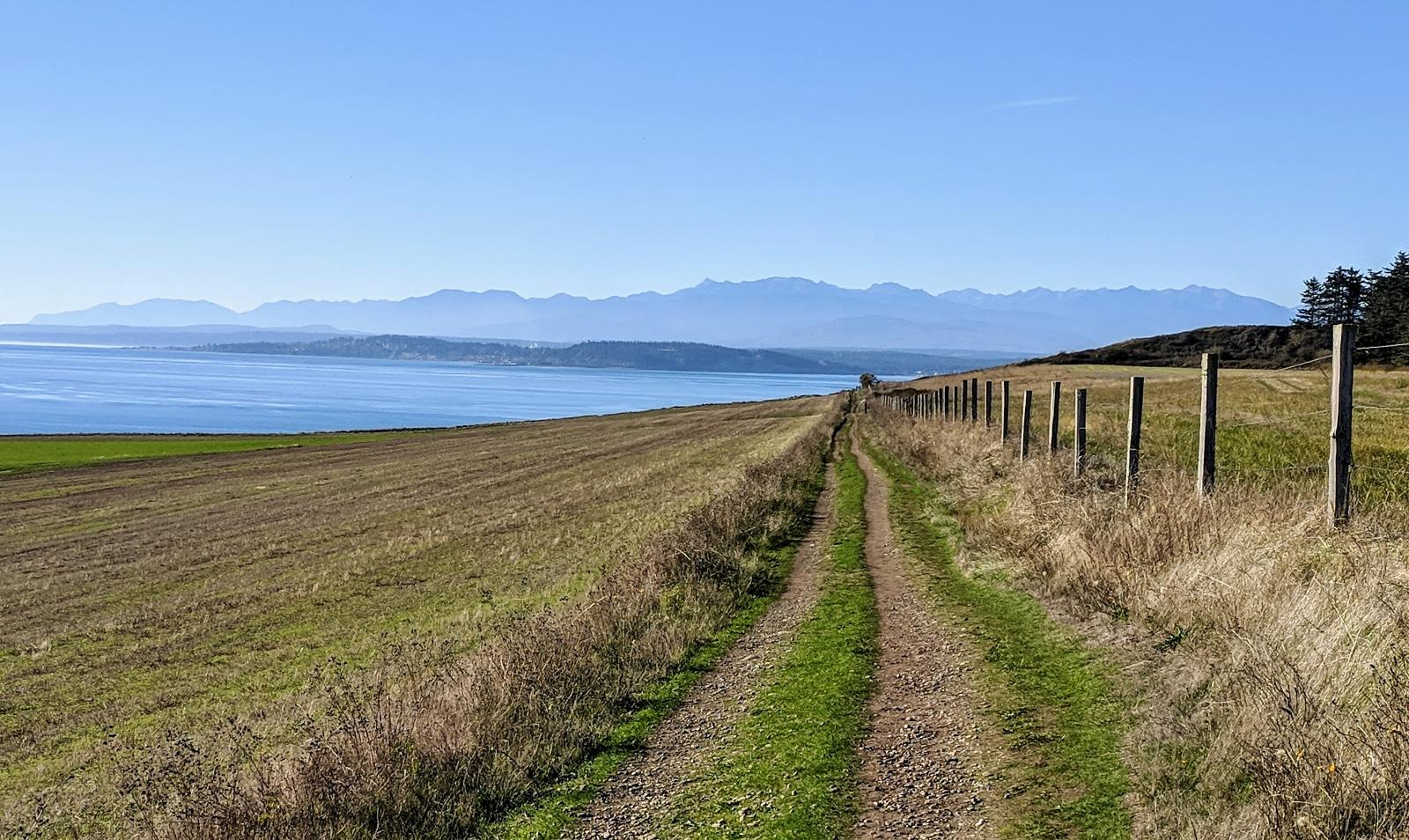 Zdjęcie Bluff Trail, Ebey's Landing National Historical Reserve