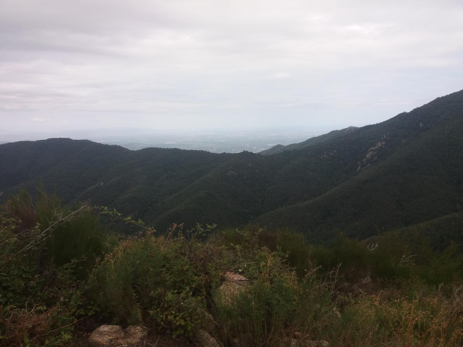 Photo de VISTAS (Llanura de Perpignan)