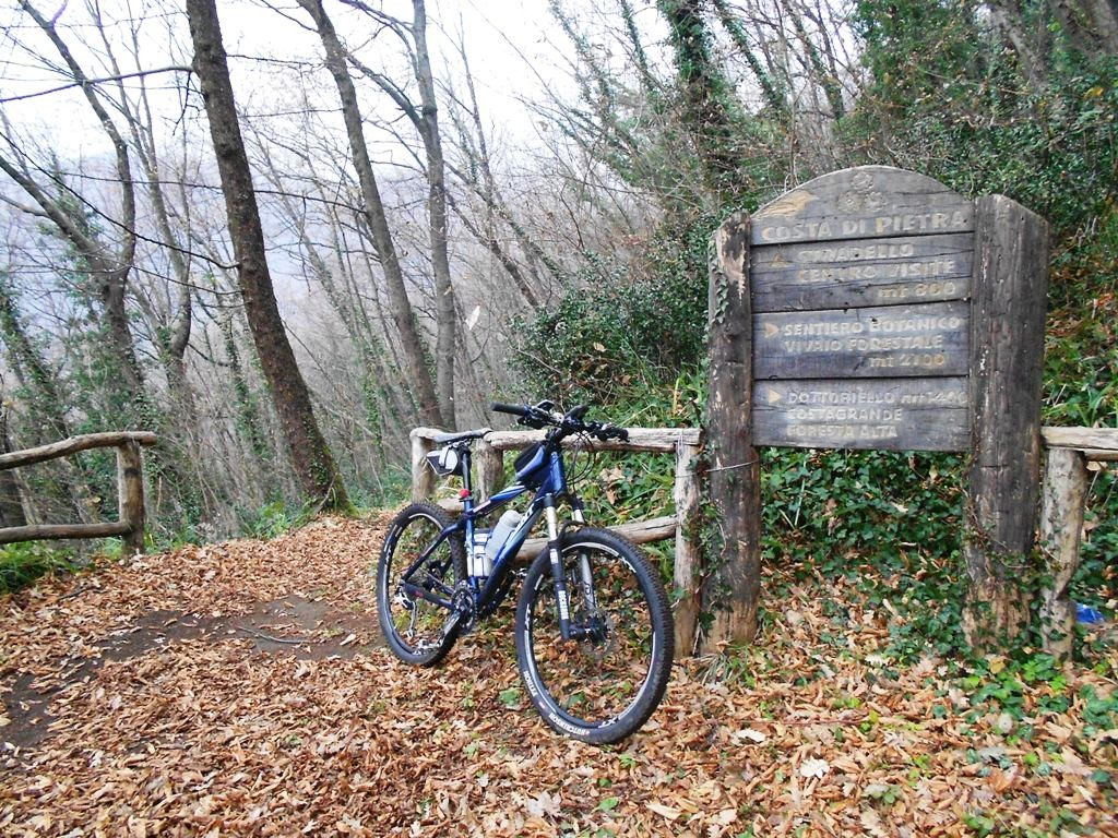 Photo de Roccarainola (Dal vivaio..al..singletrack)
