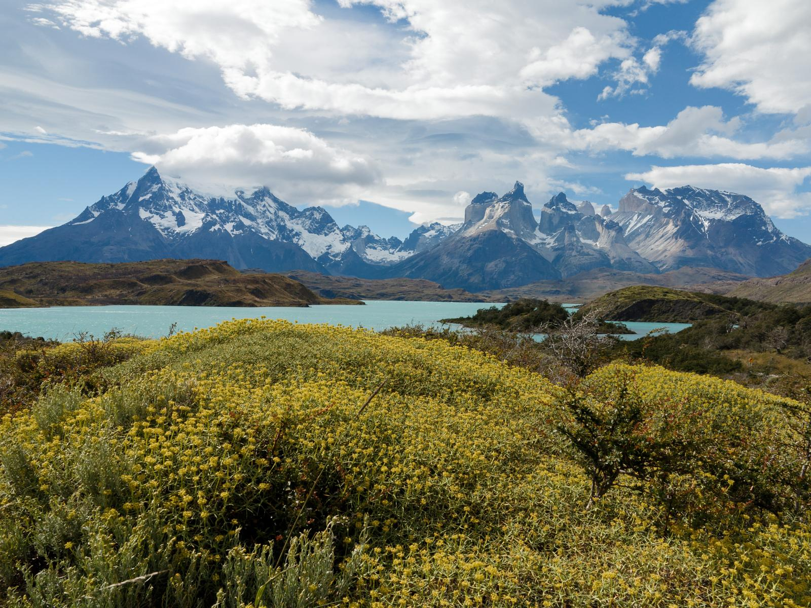 Foto van Cycling in the Paine