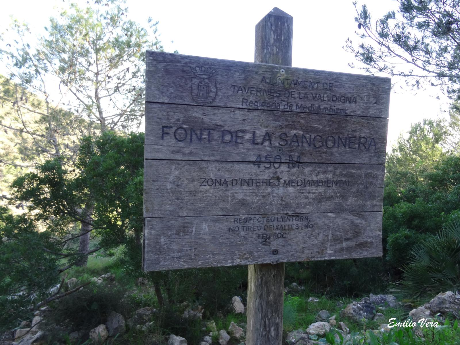 Photo of Font de la Sangonera.