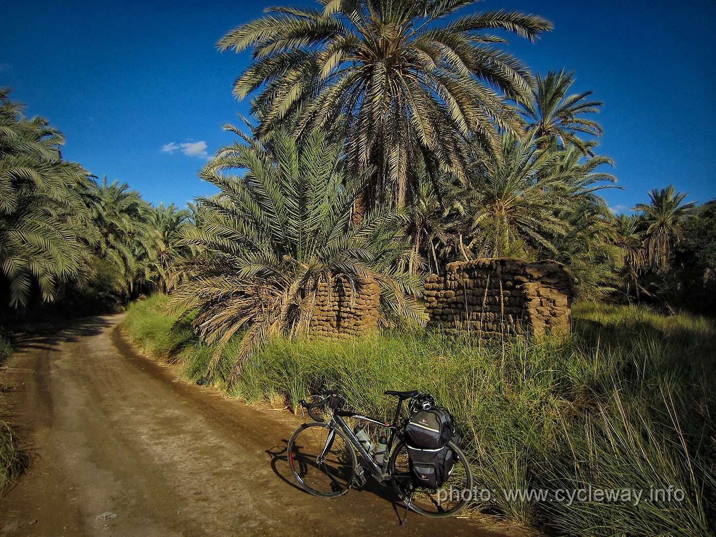 Photo of Bike walk from Bawiti to the palm trees and the lake of Bahariya Oasis