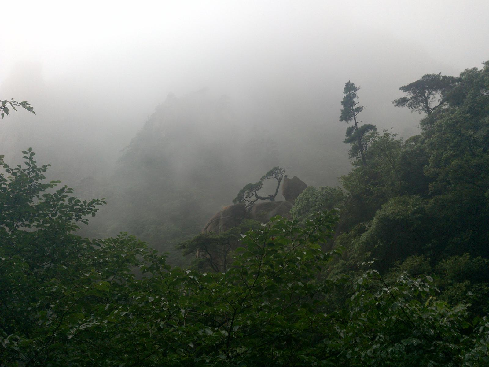 的照片 Huangshan Yellow Mountain