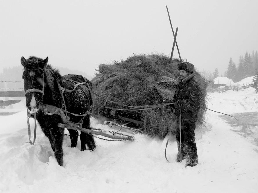 Фото Geographic expedition 'The Authentic Carpathians Villages, [winter]' (v. Verchnij Jalivec)