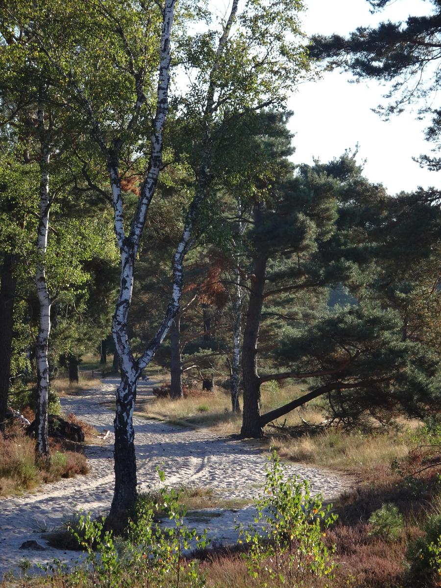 Photo of Brunssummerheide 17 km