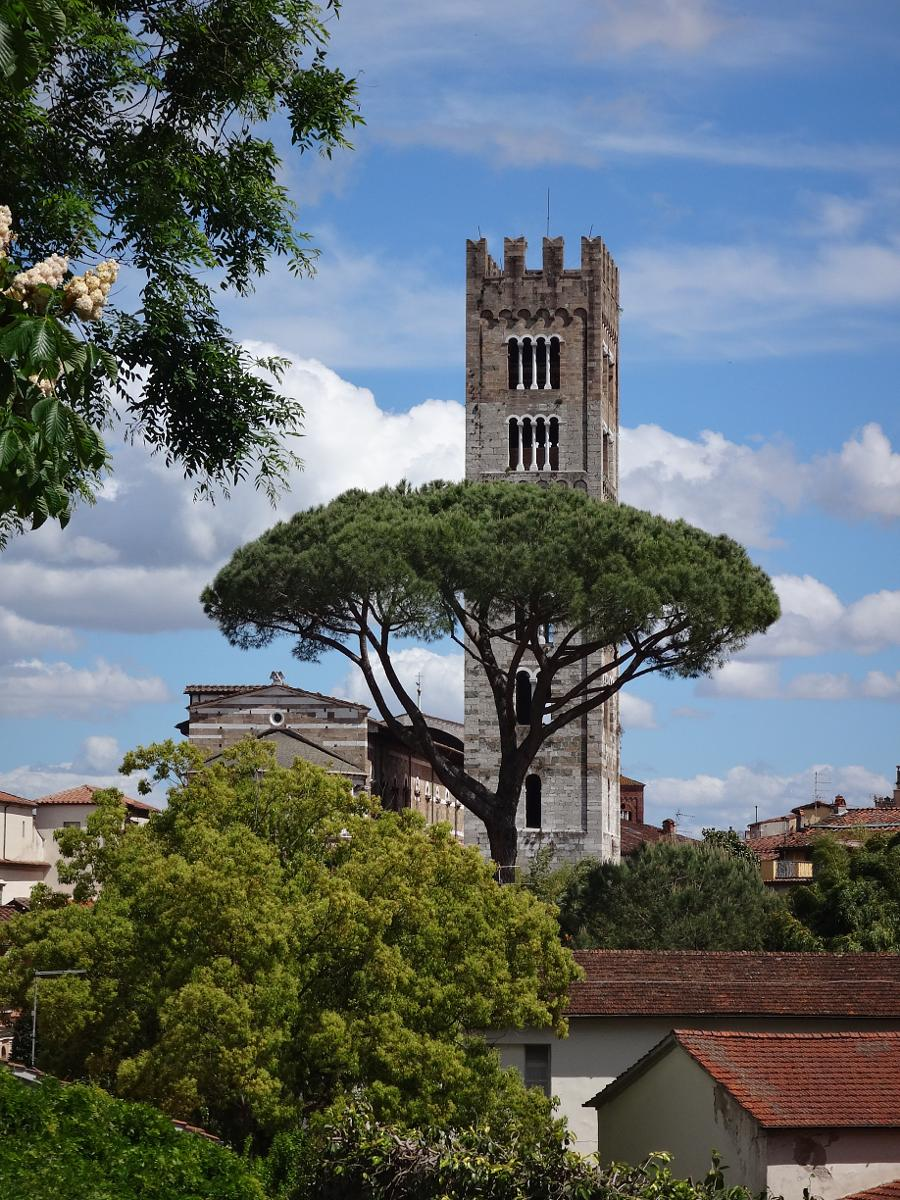 Photo of Lucca walls and city walk 8 km