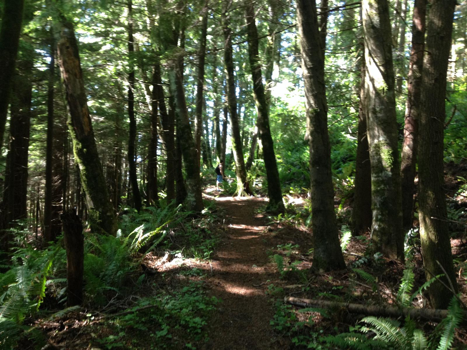 Foto von High Point to Poo Poo Point Loop