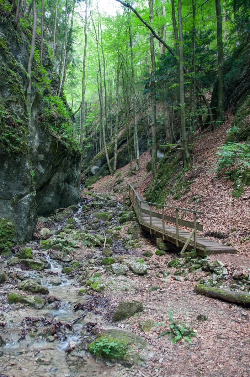 Wikiloc Photo Of Steinwandklamm Myrafälle Kreuth 23