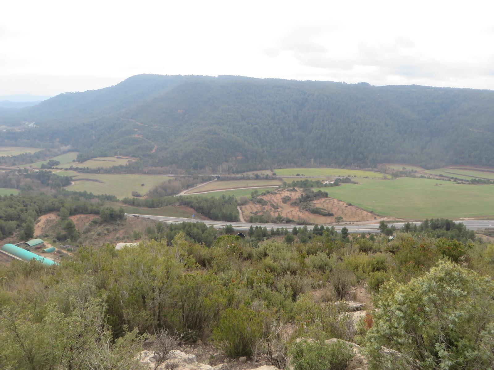 Photo of 2. Les Oliveres