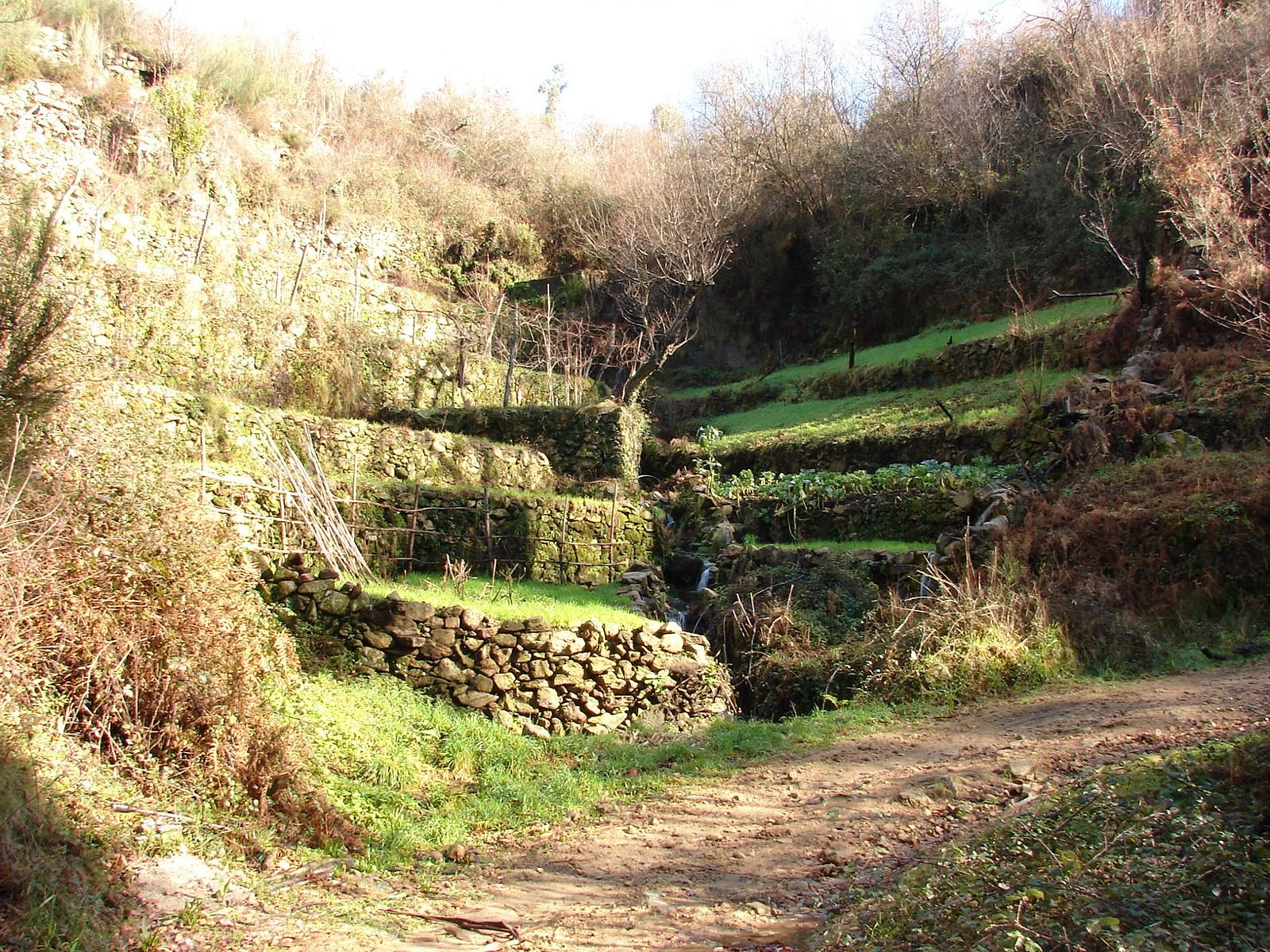 Photo of PR1 - Valandas da Felgueira (Vale de Cambra)