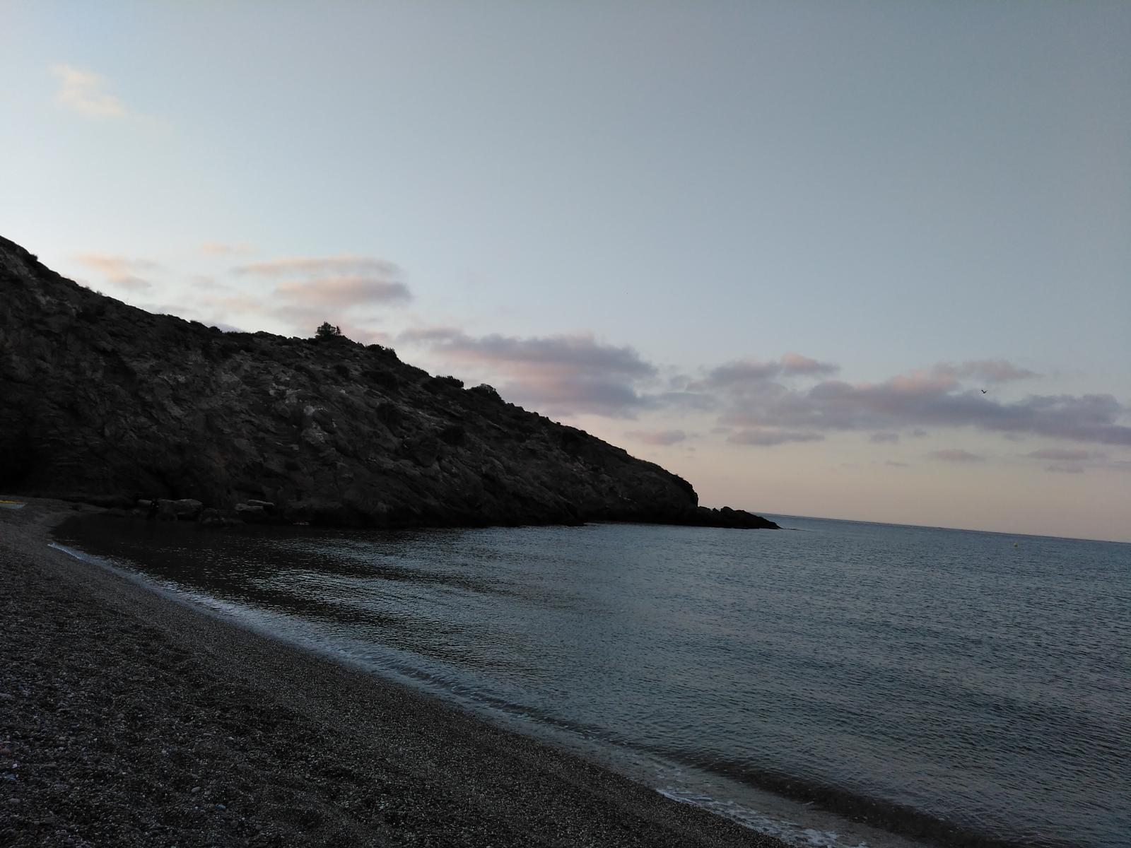 Photo of Platja del Portús