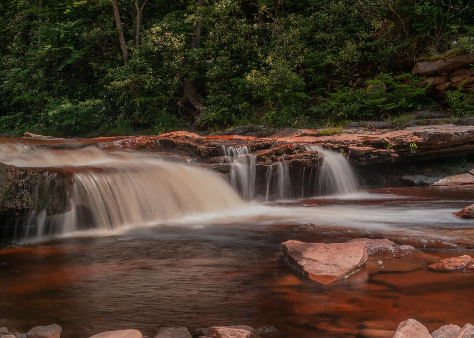 Фото Forks of Red Creek