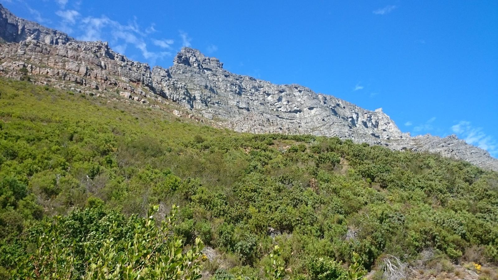 Foto di Table Mountain via Platteklip Gorge
