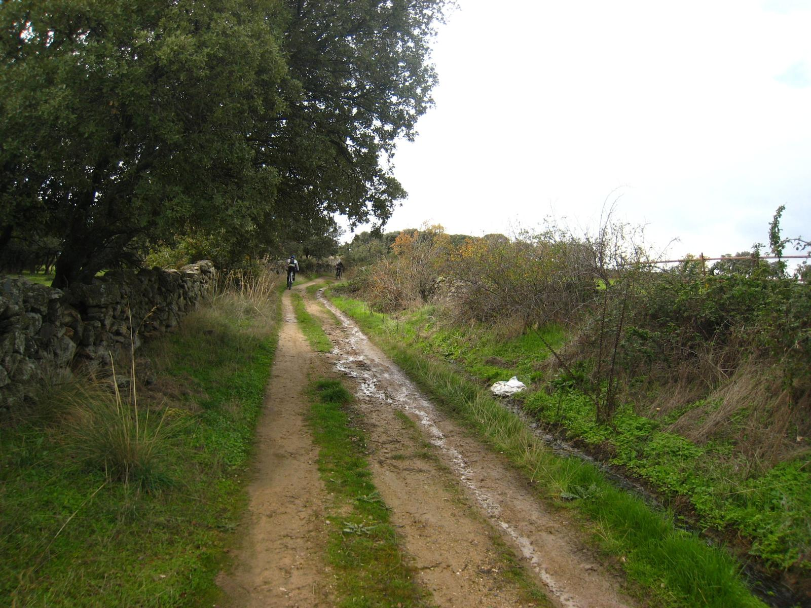 Photo of Sendero Los Hormigales