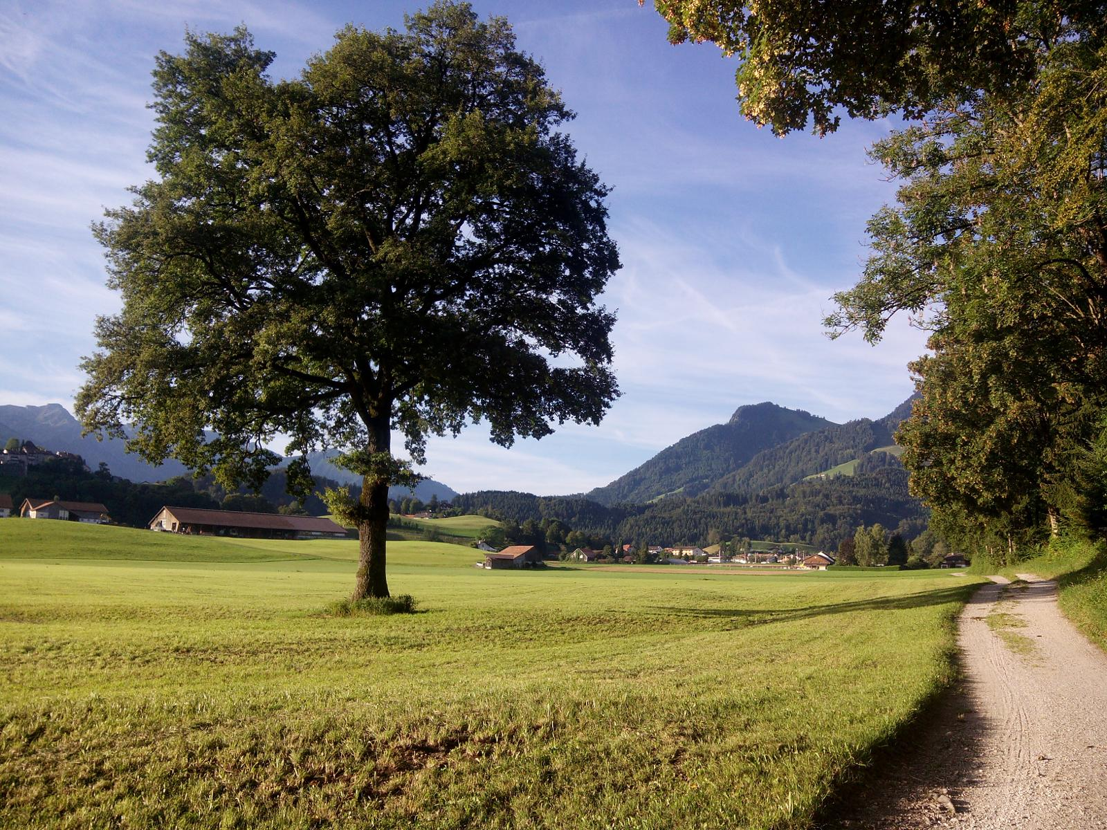 Photo of Switzerland-Camping les Sapins-Chateau de Gruyeres