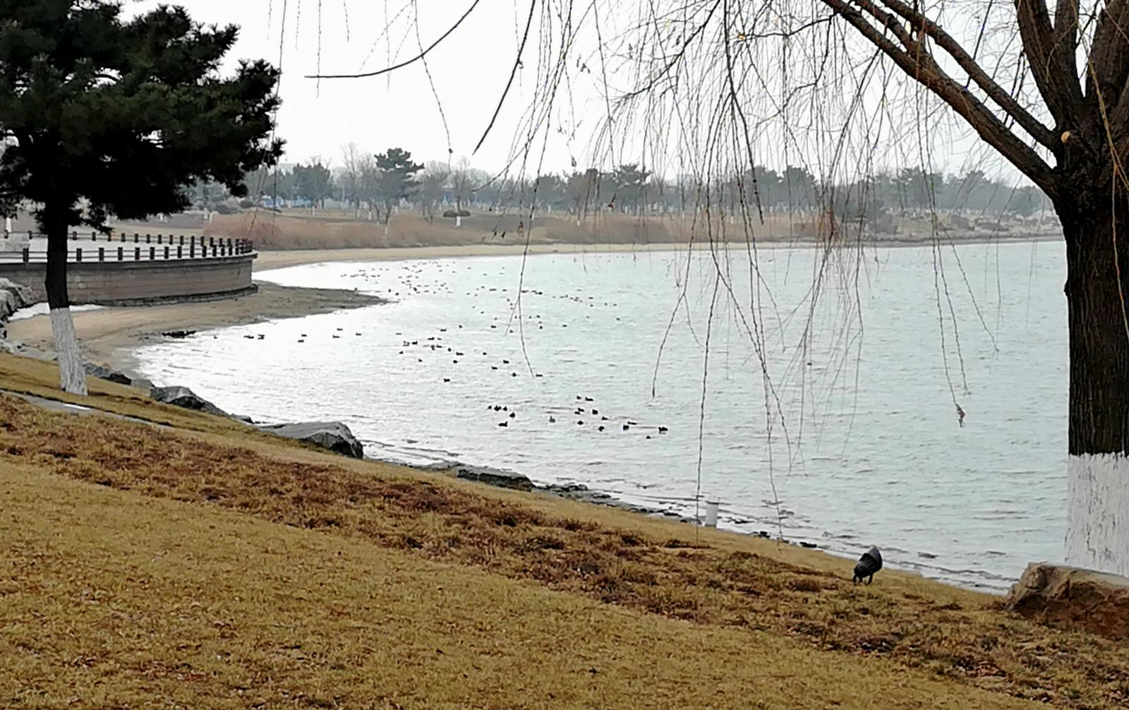 Foto de Cherry Lake Bicycle Loop, Rongcheng, Shandong Province, PRC