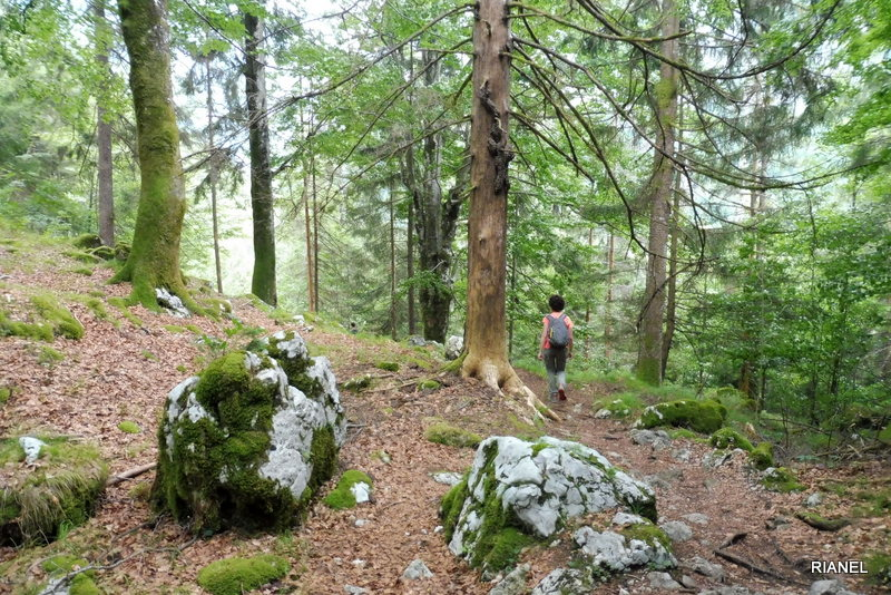 Photo of SOŠKA POT o SOČA TRAIL