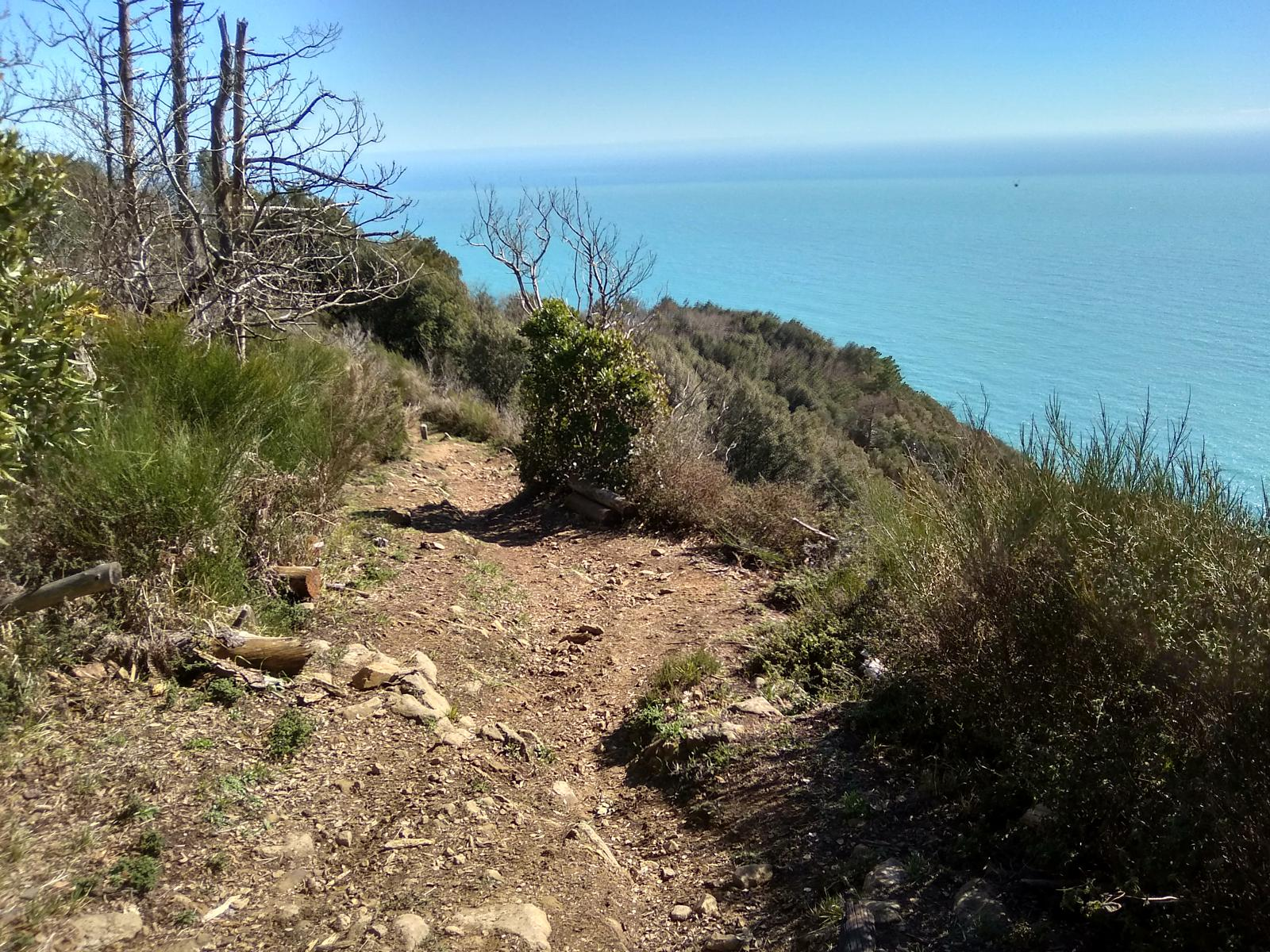 Photo of AV5T mtb- levanto la spezia 5 terre - All mountain