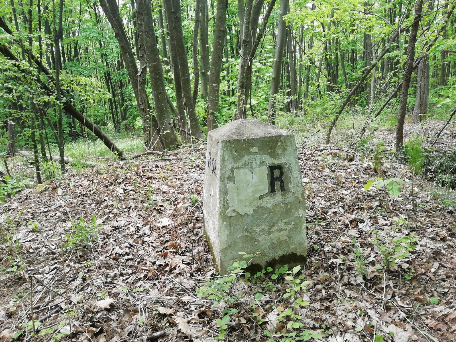 Слика од LL C19 free form over eastern part of Vršac mountain