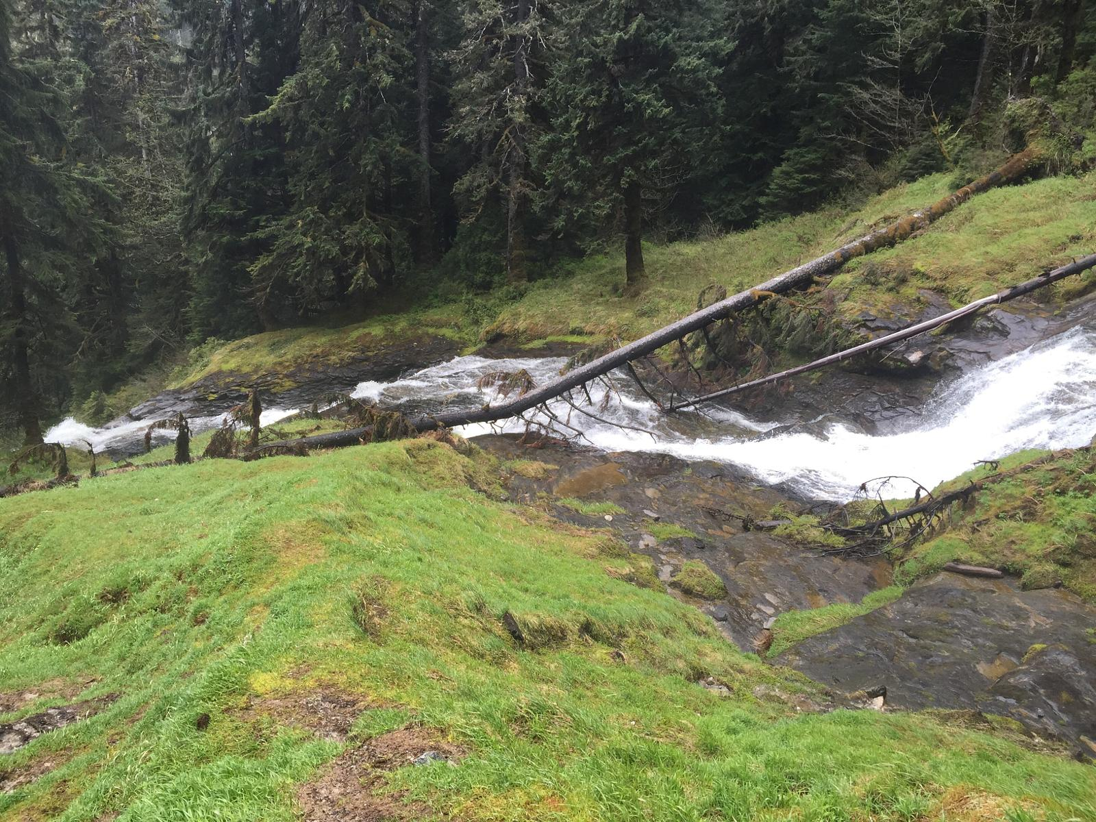 Photo of Exstew Logging Road and Falls