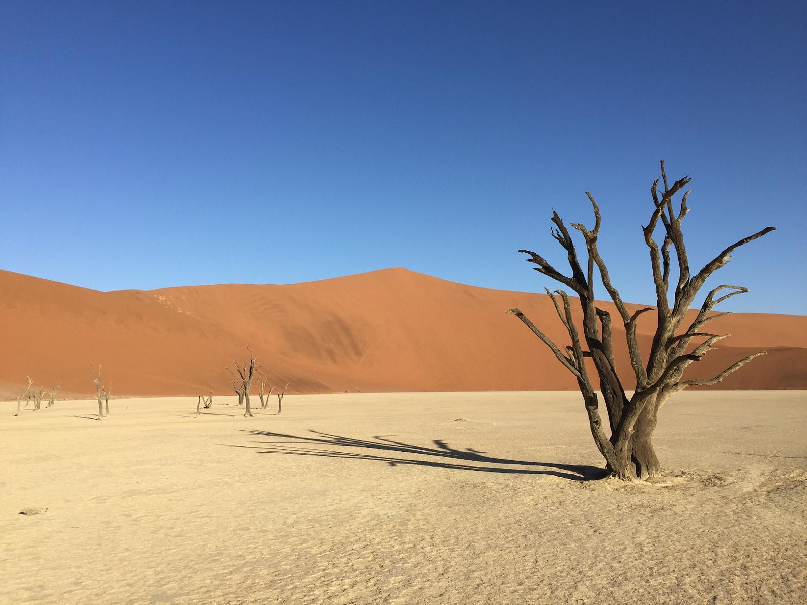 Wikiloc Picture Of Big Daddy Sossusvlei Namibia 2 5