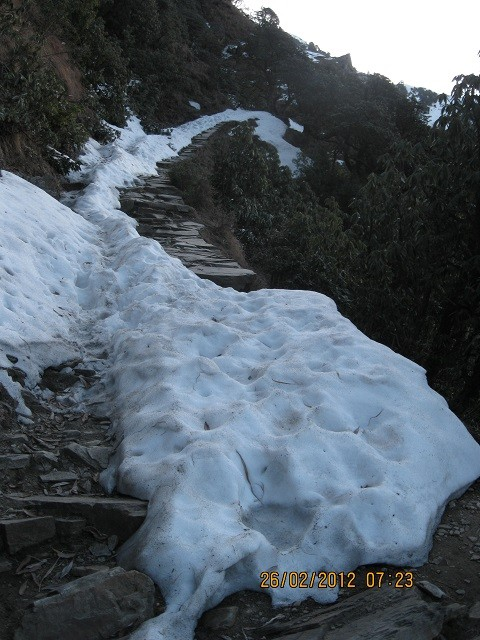 Фото Trail to Real top of Triund Hill from Gallu Devi Temple Dharamsala