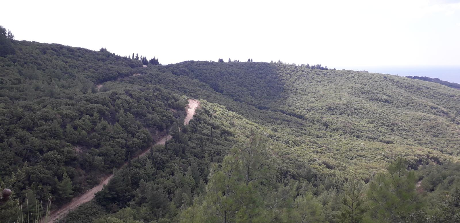 Photo of Walking from Chunuk Bair to No 3 Outpost over Rhododendron Ridge