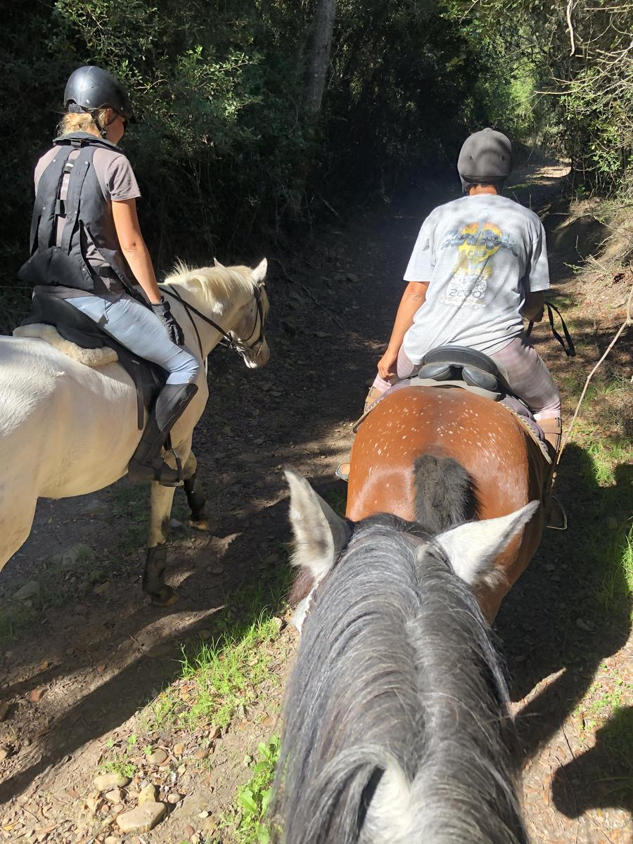 Фото Howberry to packwood ride 1